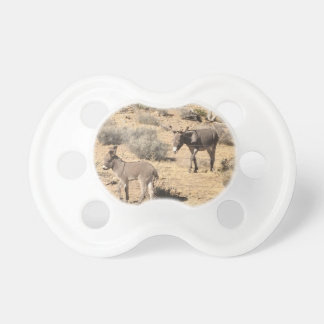 Separated by borders pacifier
