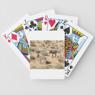 Separated by borders poker deck