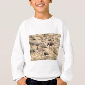 Separated by borders sweatshirt