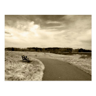Sepia Bench Postcard