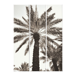 Sepia Date Tree Canvas Print