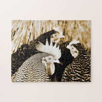 Sepia Rooster & Hens Chicken Puzzle