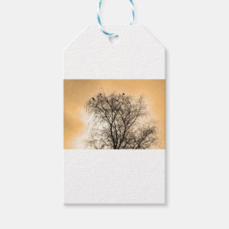 Sepia Roosting birds Gift Tags