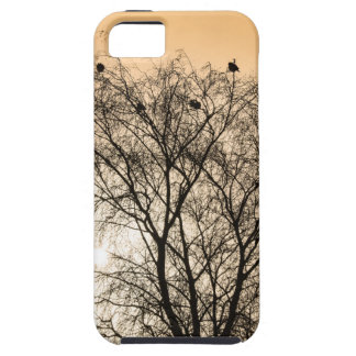 Sepia Roosting birds iPhone 5 Cover
