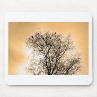 Sepia Roosting birds Mouse Pad