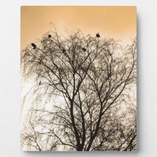 Sepia Roosting birds Plaque