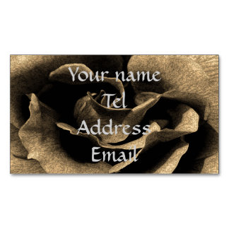 Sepia Rose in Ink Magnetic Business Card