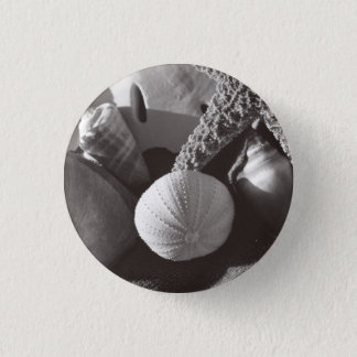 Sepia Shore pin