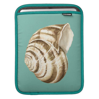 Sepia Striped Shell on Teal Sleeves For iPads