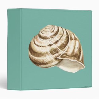 Sepia Striped Shell on Teal Vinyl Binders