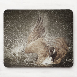 Sepia Tone Canada Goose Slapping The Water Mouse Pad