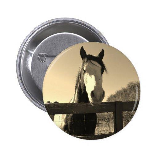 Sepia Tone Horse Pin
