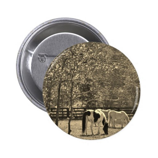 Sepia Tone  Photo of Horse Pins