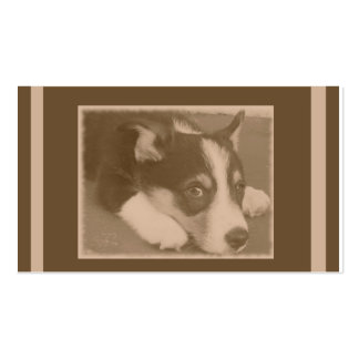 Sepia Toned Dog Pack Of Standard Business Cards