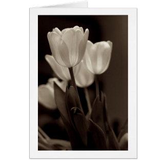 Sepia Tulip Note Card