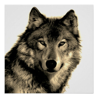 Sepia Unique Motivational Wolf Creative Square Poster