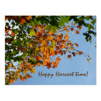 September colours postcard