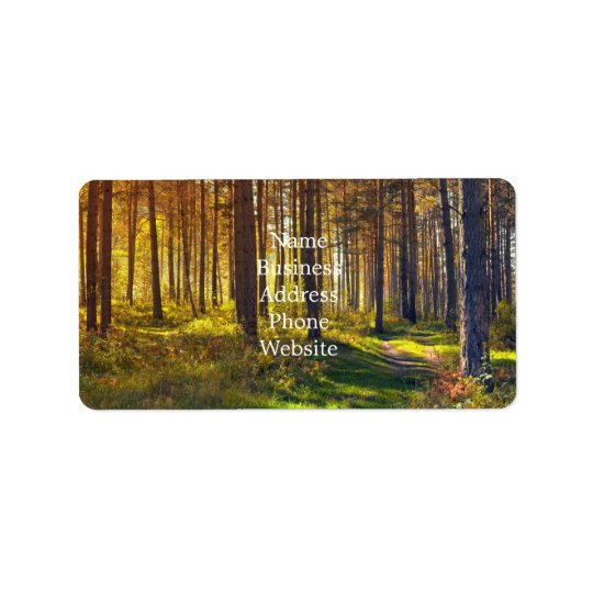 September in the forest.Sunrise in autumn forest Label