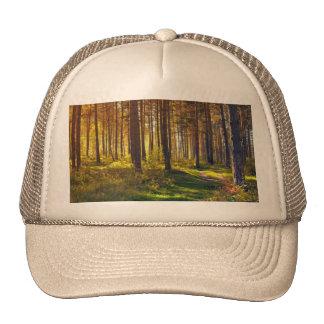 September in the forest.Sunrise in autumn forest Trucker Hat