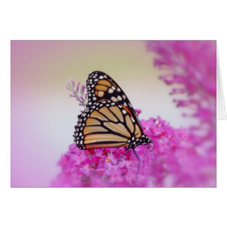 September Monarch Butterfly Card