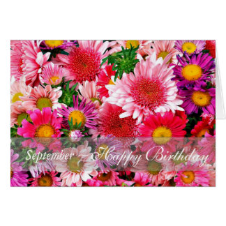 September Stunning Pink Asters for Birthday Card