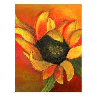 September Sunflower 2011 Postcard