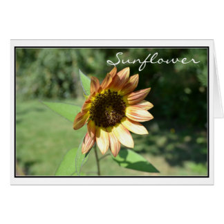 September Sunflower Card