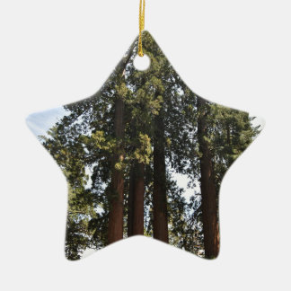 Sequioa National Park Ceramic Ornament