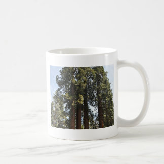 Sequioa National Park Coffee Mug