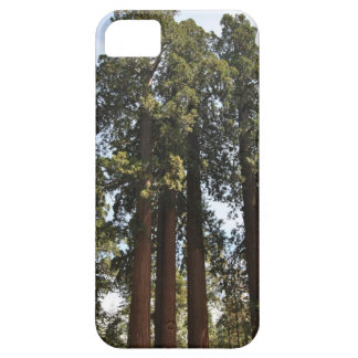 Sequioa National Park iPhone 5 Cover