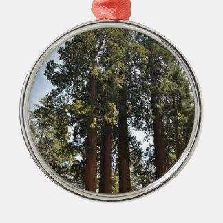 Sequioa National Park Silver-Colored Round Ornament