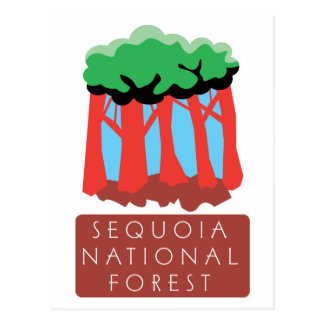 Sequoia National Forest Postcard