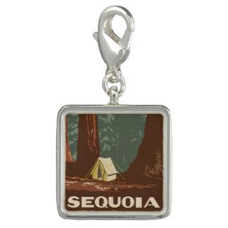 Sequoia National Park Charm