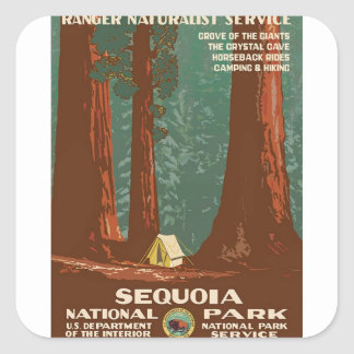 Sequoia National Park Square Sticker