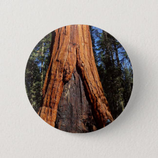 Sequoias Trees Giants Burned Bark 2 Inch Round Button