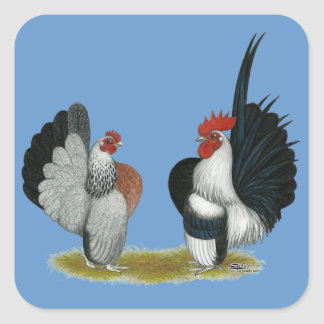 Serama Bantams Square Sticker