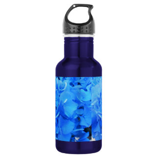 Seraphine 532 Ml Water Bottle