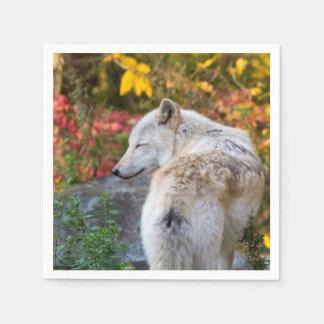 Serene Autumn Wolf Disposable Napkins