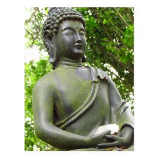 Serene Buddha Statue Postcard