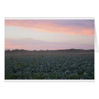 Serene_country_background.JPG Card