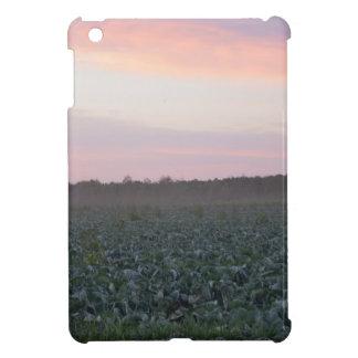 Serene_country_background.JPG iPad Mini Cases