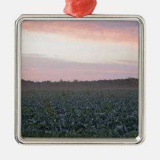 Serene_country_background.JPG Metal Ornament