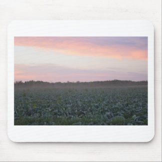 Serene_country_background.JPG Mouse Pad