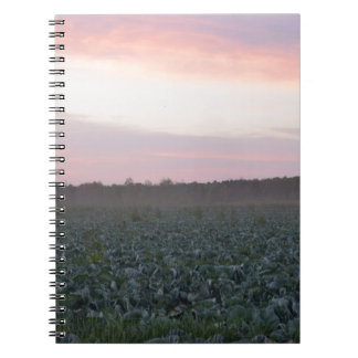 Serene_country_background.JPG Notebooks