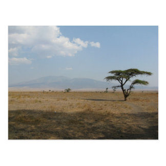 Serengeti Plains Postcard