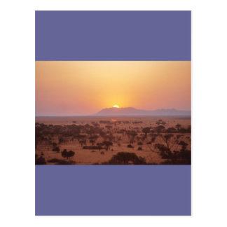 Serengeti Sunset Postcard