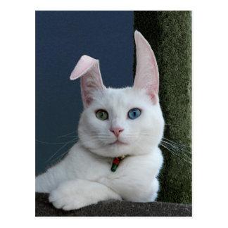 Serenity as Bunny postcard