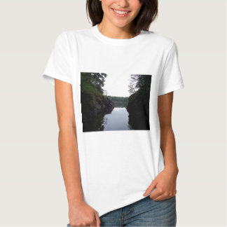 Serenity In Here T Shirts