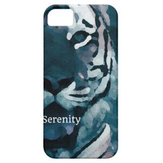 Serenity iPhone 5 Cases