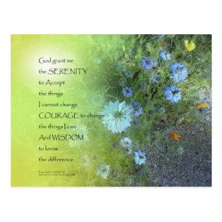 Serenity Prayer Bachelor's Buttons Postcard